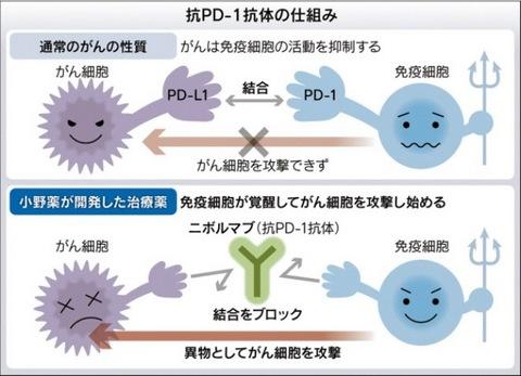 PD1.jpg