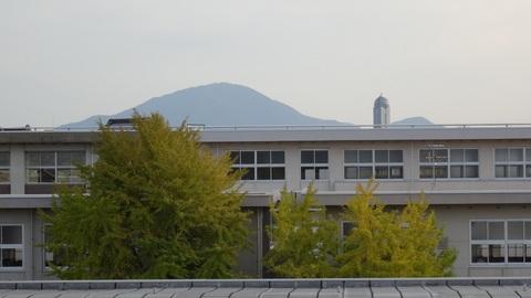 00367.jpg